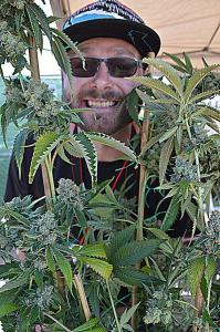Cannabis makes people happy